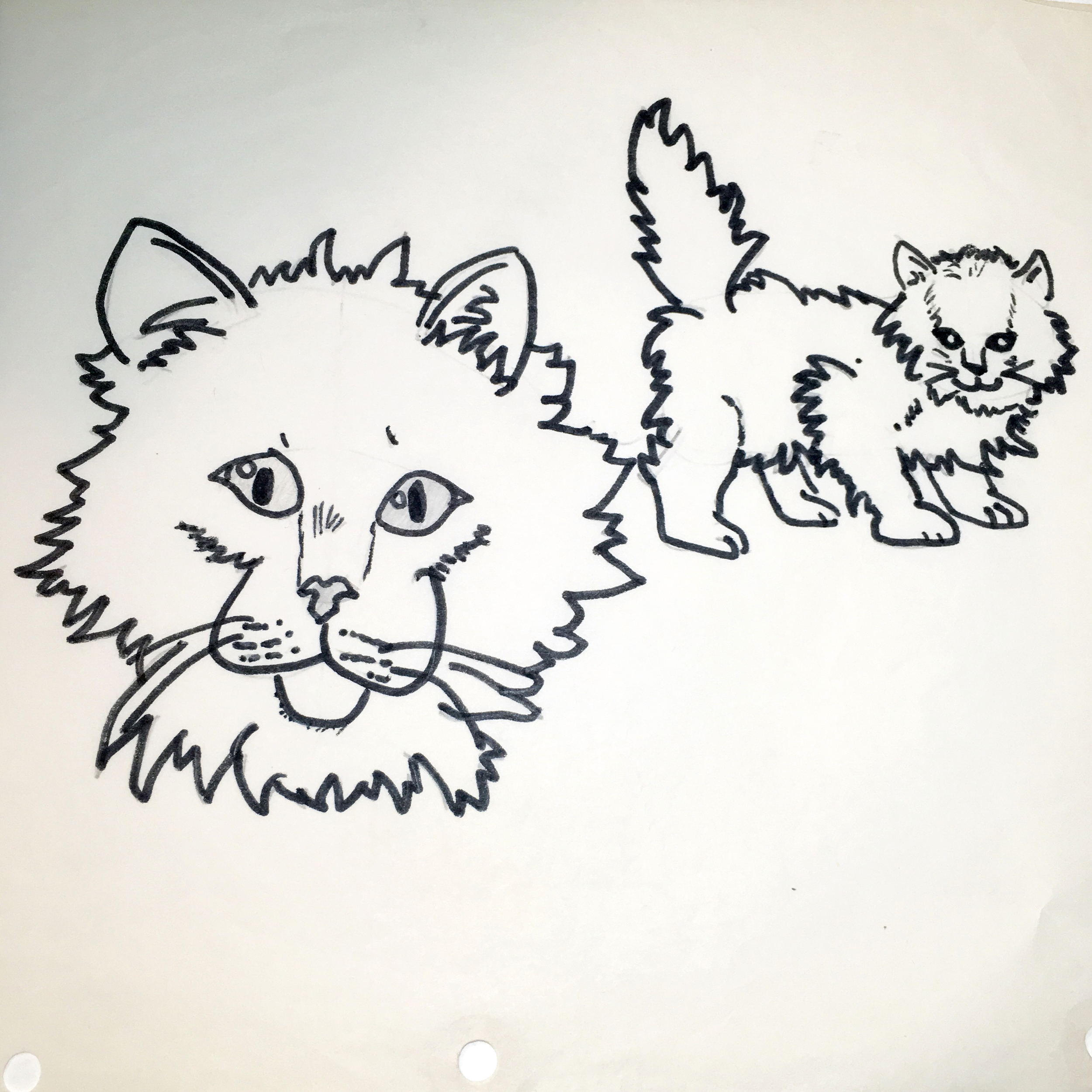Throwback Thursday- 6th grade drawing of cats
