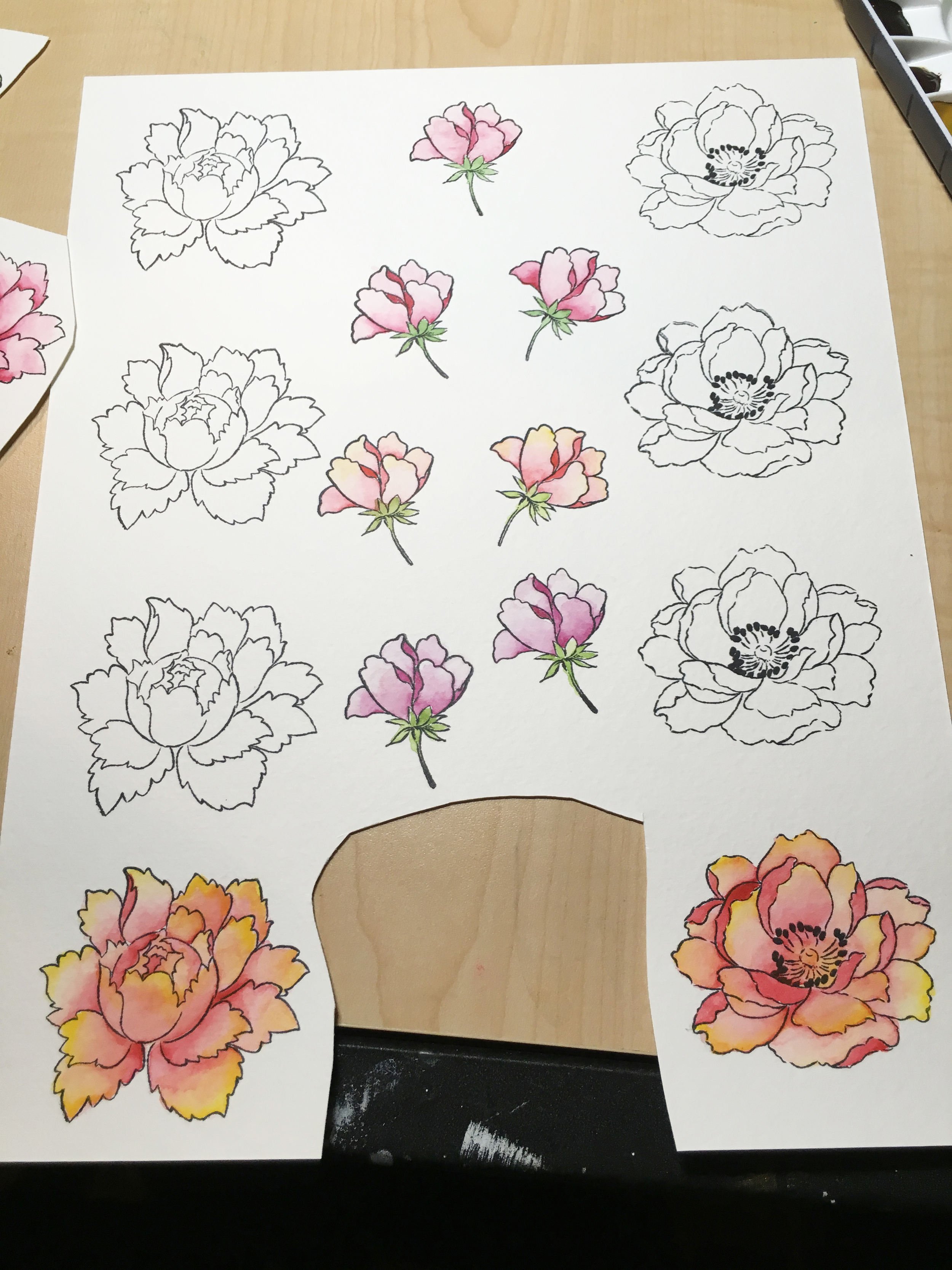 WIP- Watercolor in Progress and new Altenew Peony Stamps