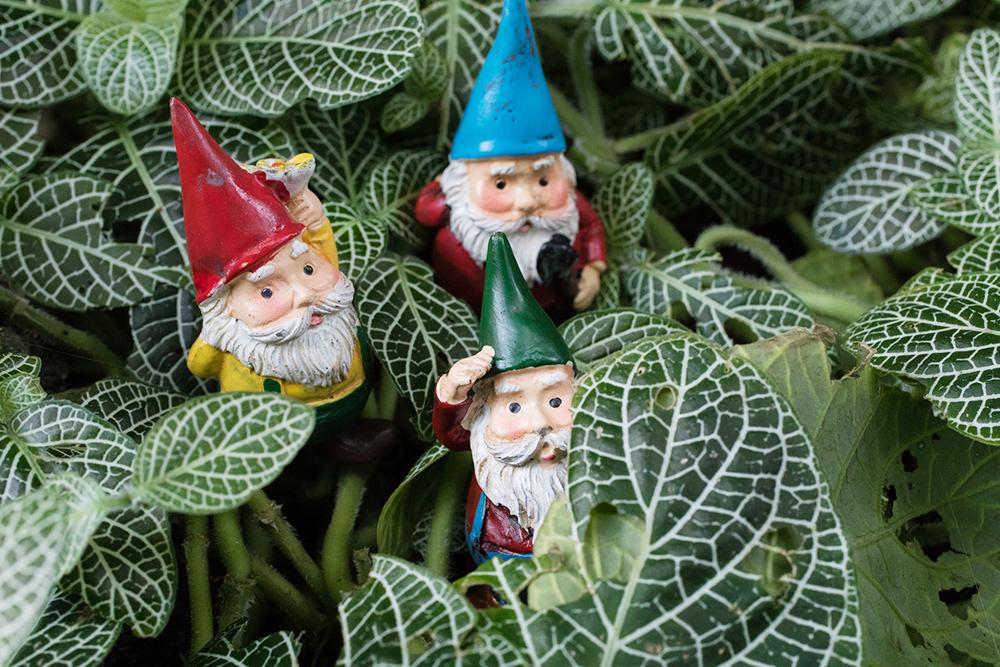 garden gnome trio - april bern photograpy