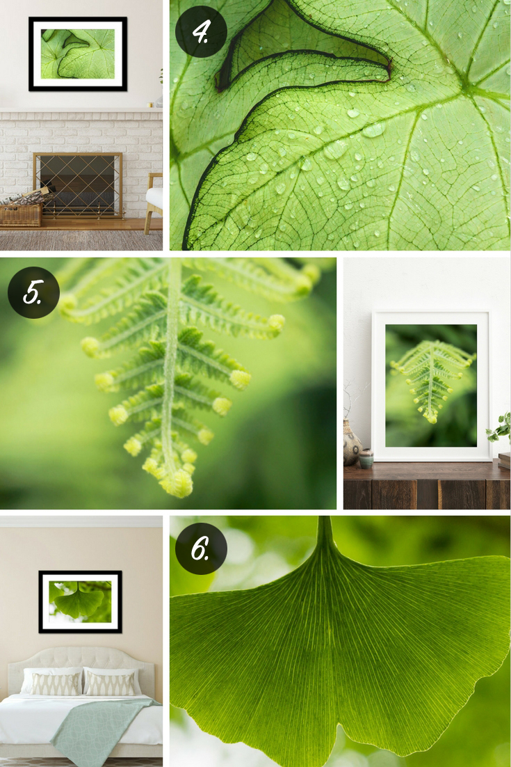 2017 Pantone Color of the Year Greenery