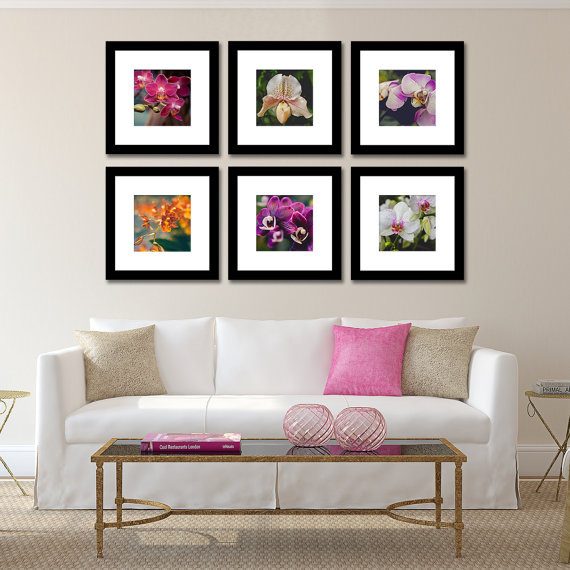 Set of 6 Orchid Art Prints