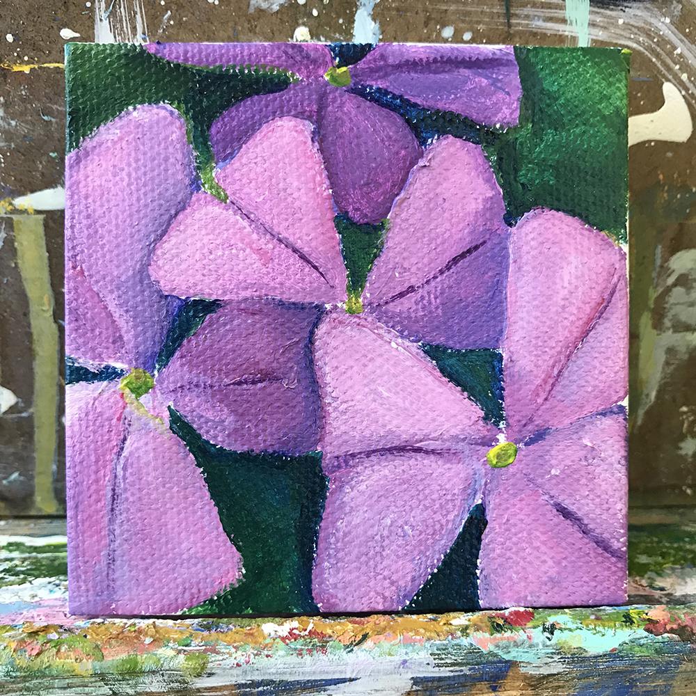 """77/100 3""""x3"""" acrylic painting. Oxalis."""