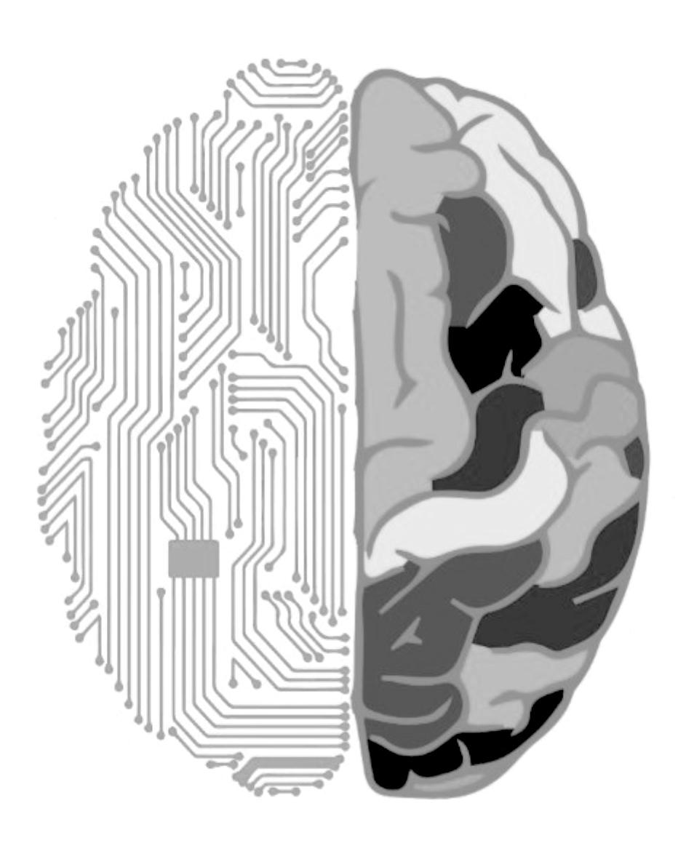 Left Brain people vs Right Brain people   Editor's Edge   image curation, photo editor, photo curation, visual content consultant, visual content creator