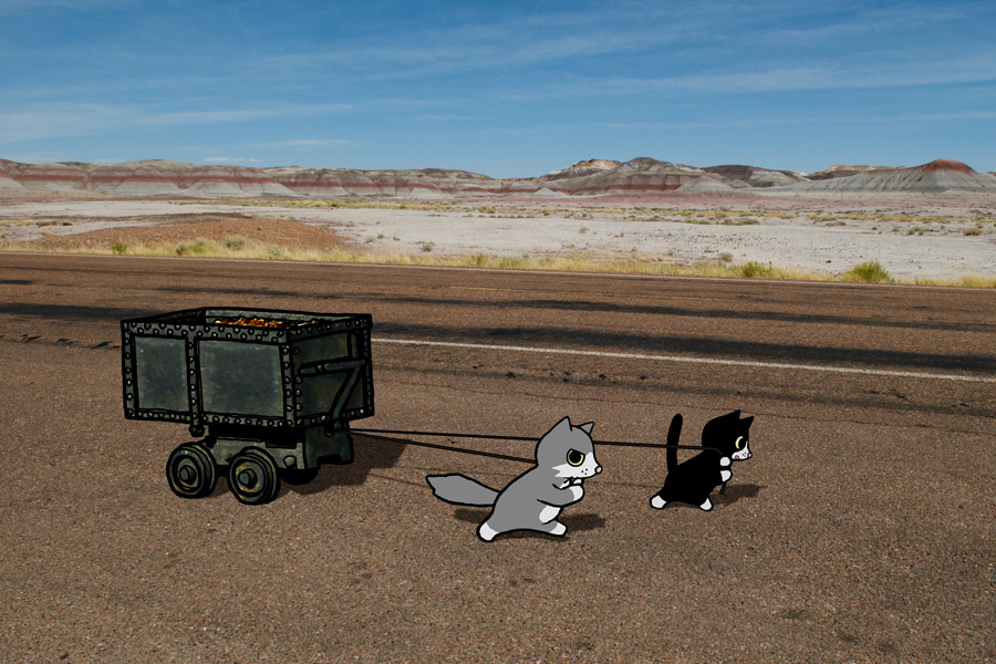 On Native Land : Pinky & Bunny pull 360 pounds of uranium tailings through Petrified Forest National Park  (2009).