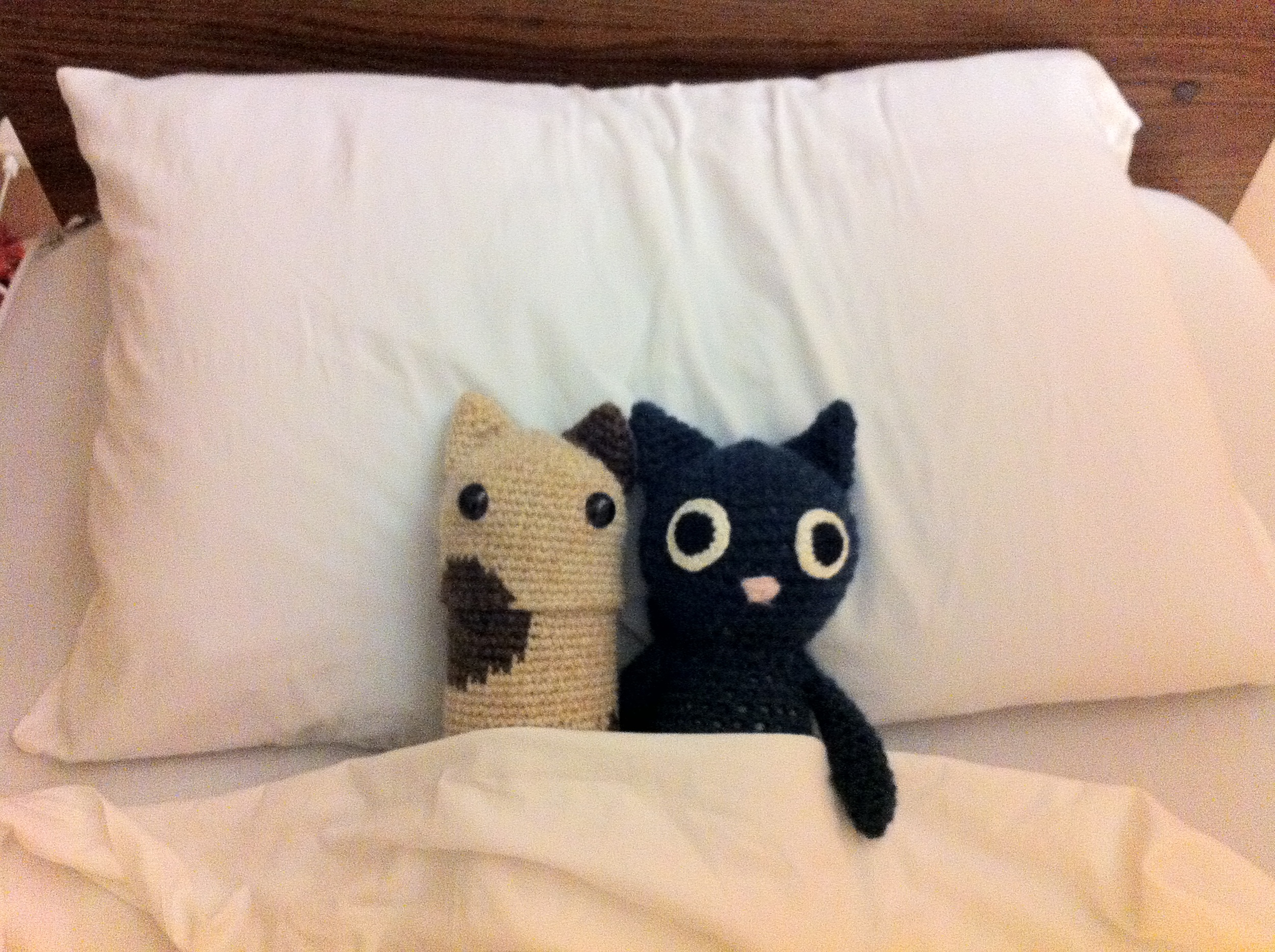 I like this picture because here Water Cat that I made is tucked in next to Wheelchair Lady's sleep doll that Bunny made for her. This is Wheelchair Lady's bed at the hospital.