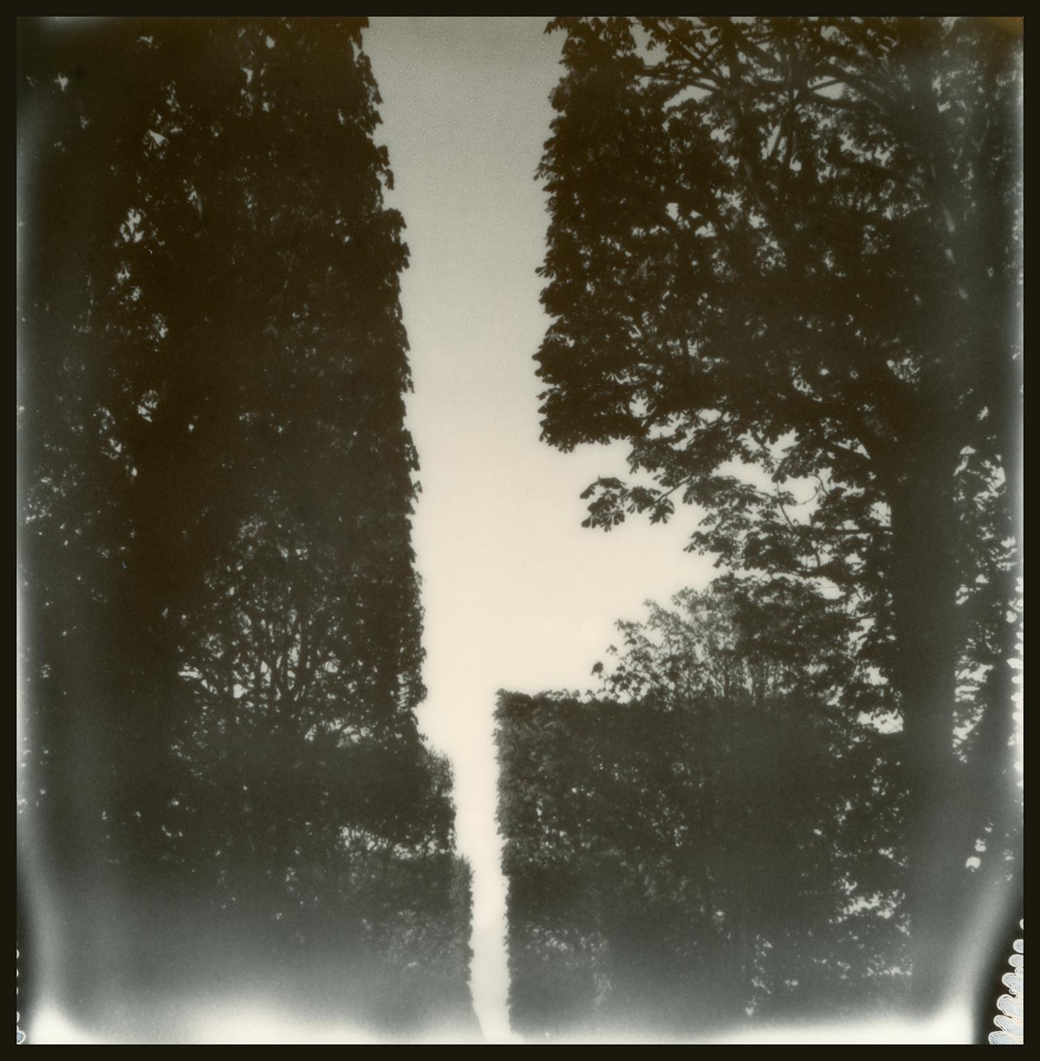Jardin des Explorateurs_GOA.4.12.16.031.jpg