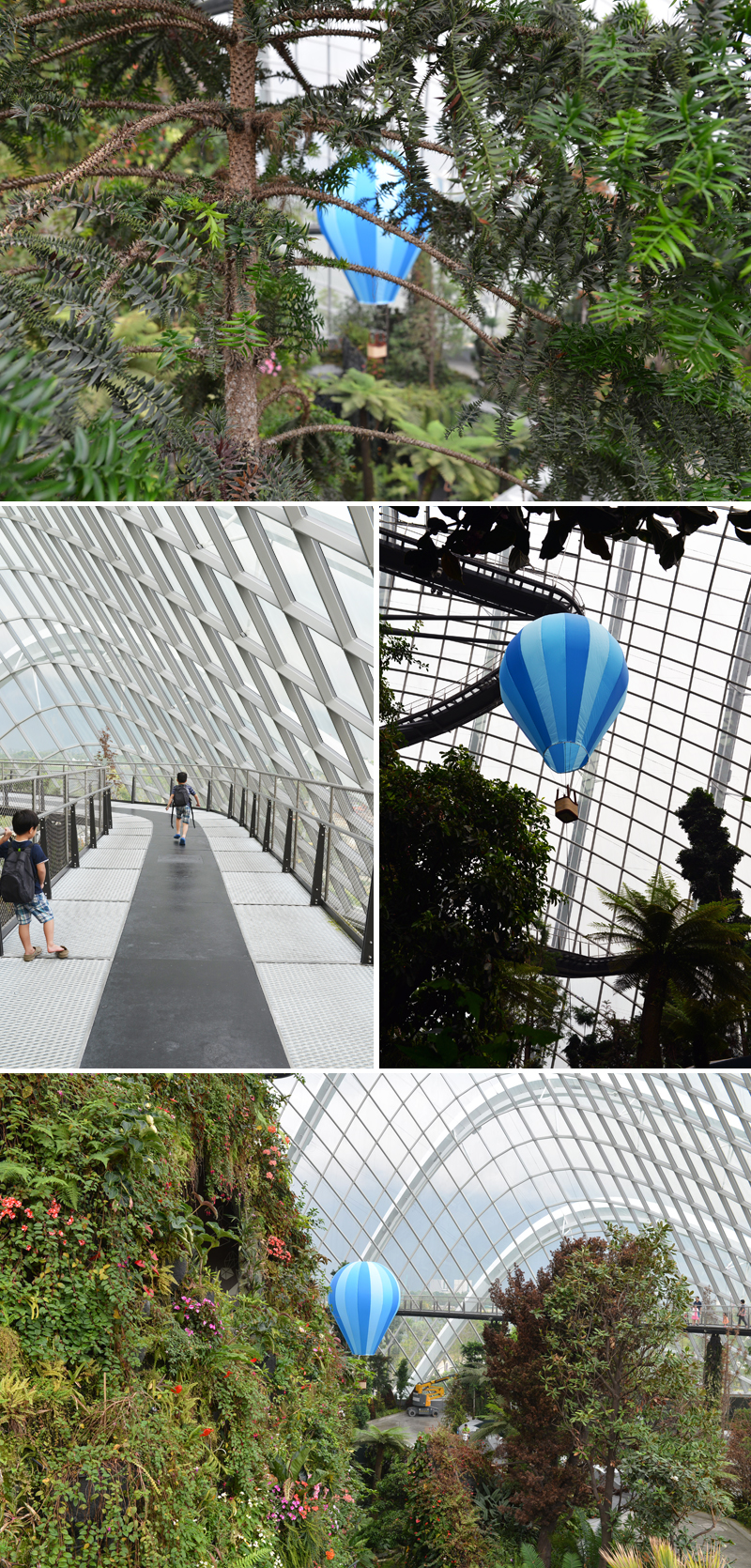 cloud forest | flight of fancy | scissors paper stone blog
