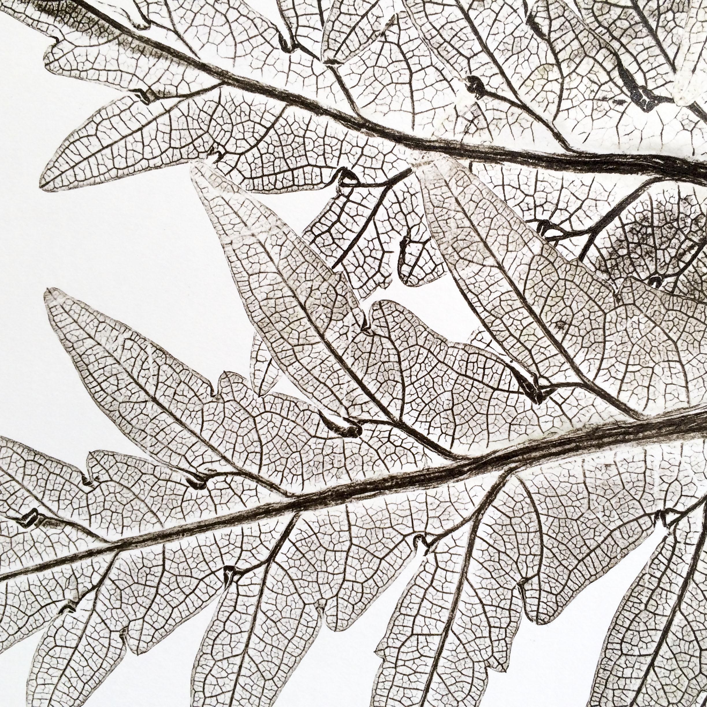 Artichoke monoprint detail.