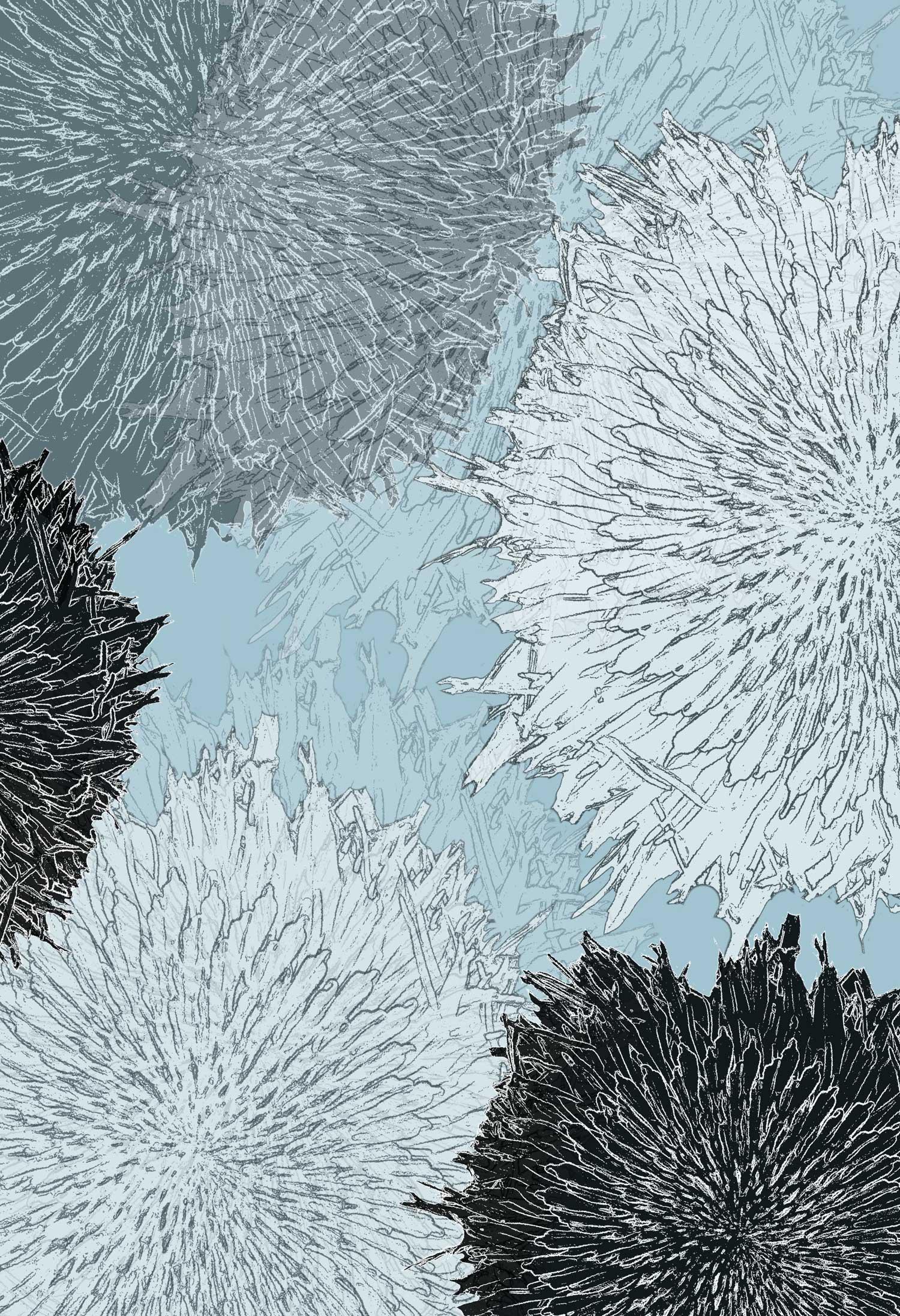SNOW FLOWER, Chilly Blue  ©  Karen Gearhart-Jensen relatingtonature.com