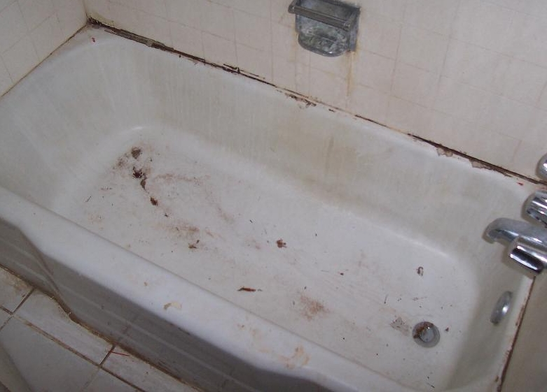 installing-a-good-bathtub-sample-of-a-dirty-bathtub.jpg
