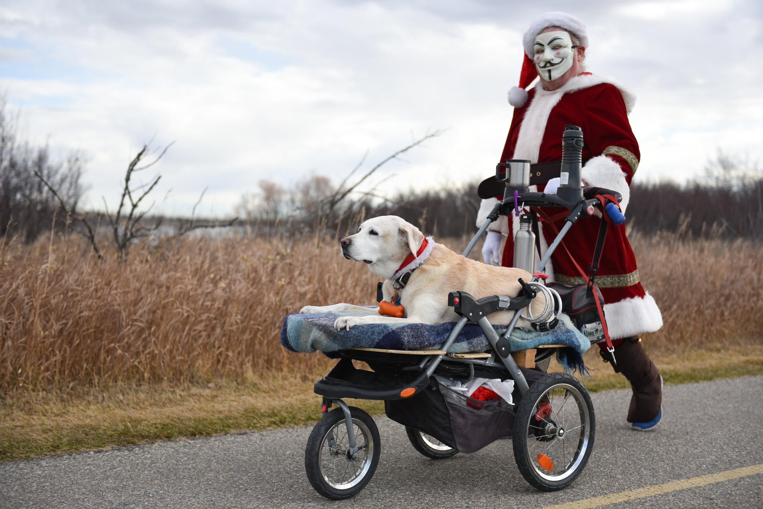 00-20171027 Tails of Help 2017 Howloween Dog Walk SOT 0294.jpg