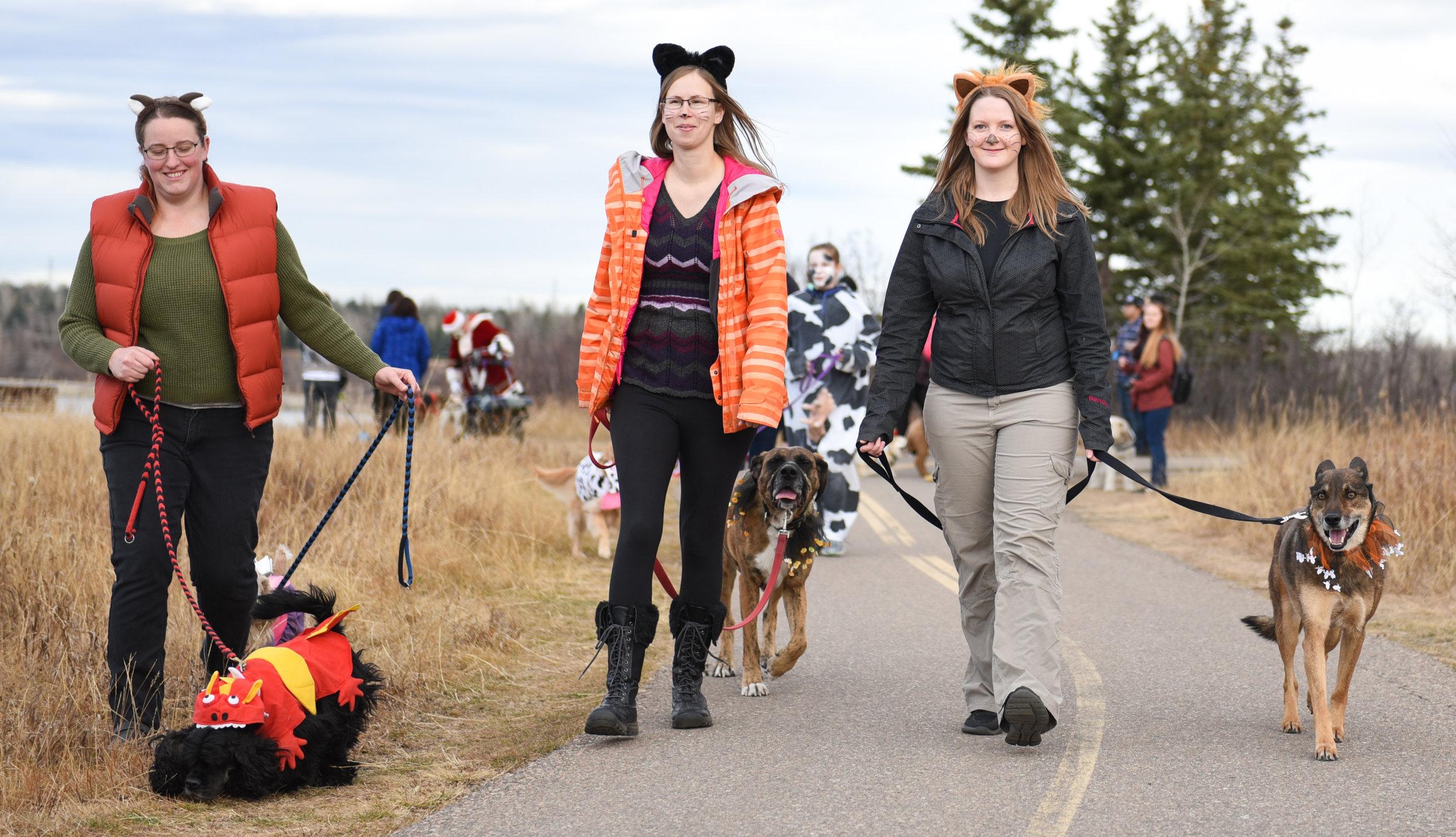 00-20171027 Tails of Help 2017 Howloween Dog Walk SOT 0214.jpg