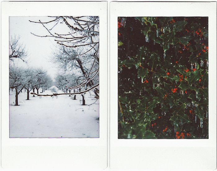 Instax_Mini90_Landscapes_2.png