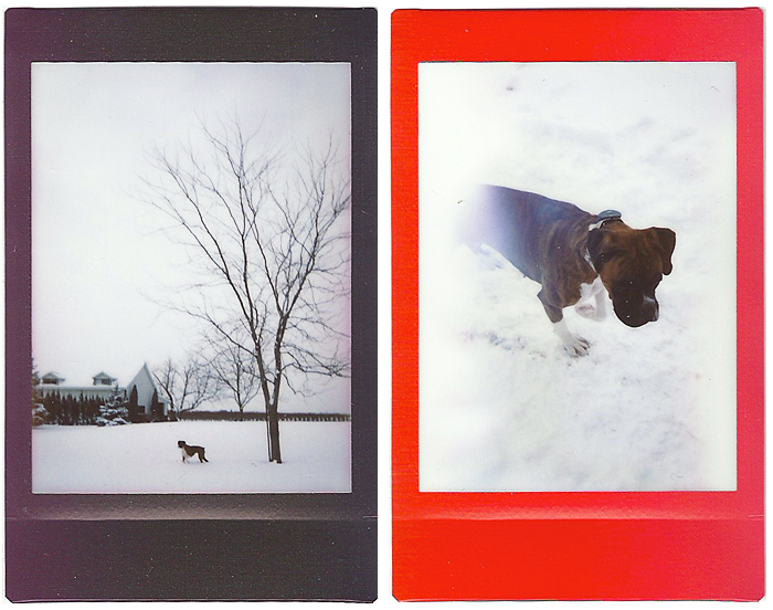 Instax_Mini90_RainbowFilm_1.png