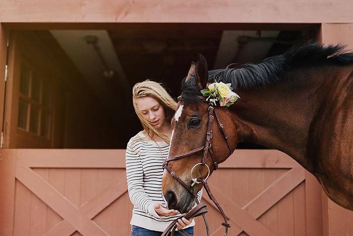 horse-stables-fonthill-037.jpg