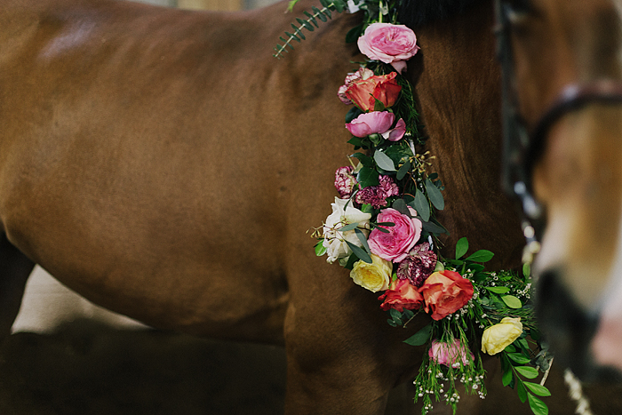 horse-stables-fonthill-092.jpg