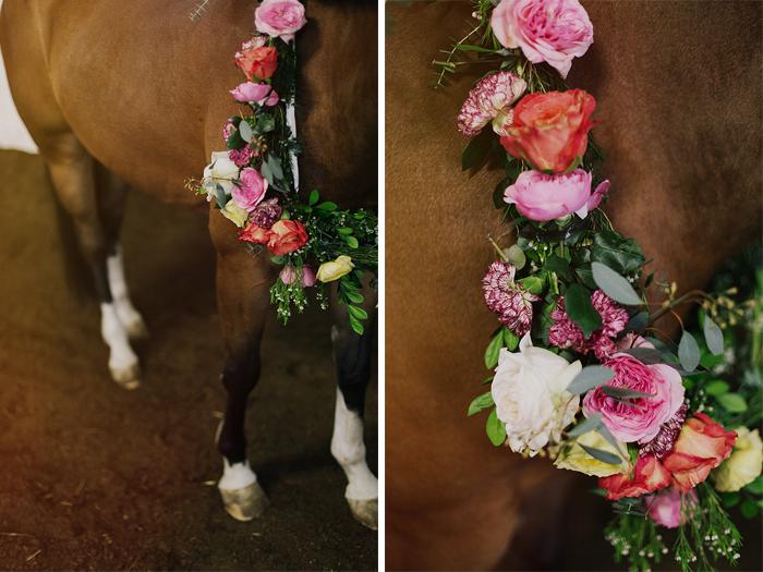 horse-stables-fonthill-09496.jpg