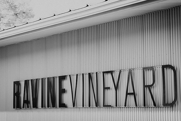 matt-and-erin-vineyard-wedding-054.jpg