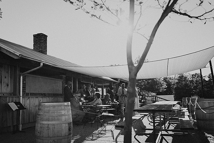 matt-and-erin-vineyard-wedding-221.jpg