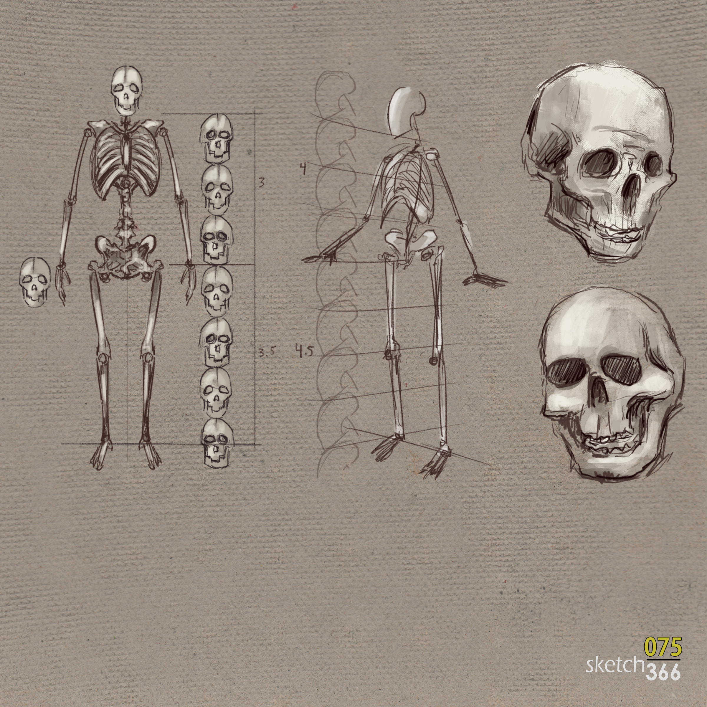 human studies - digital pen and ink