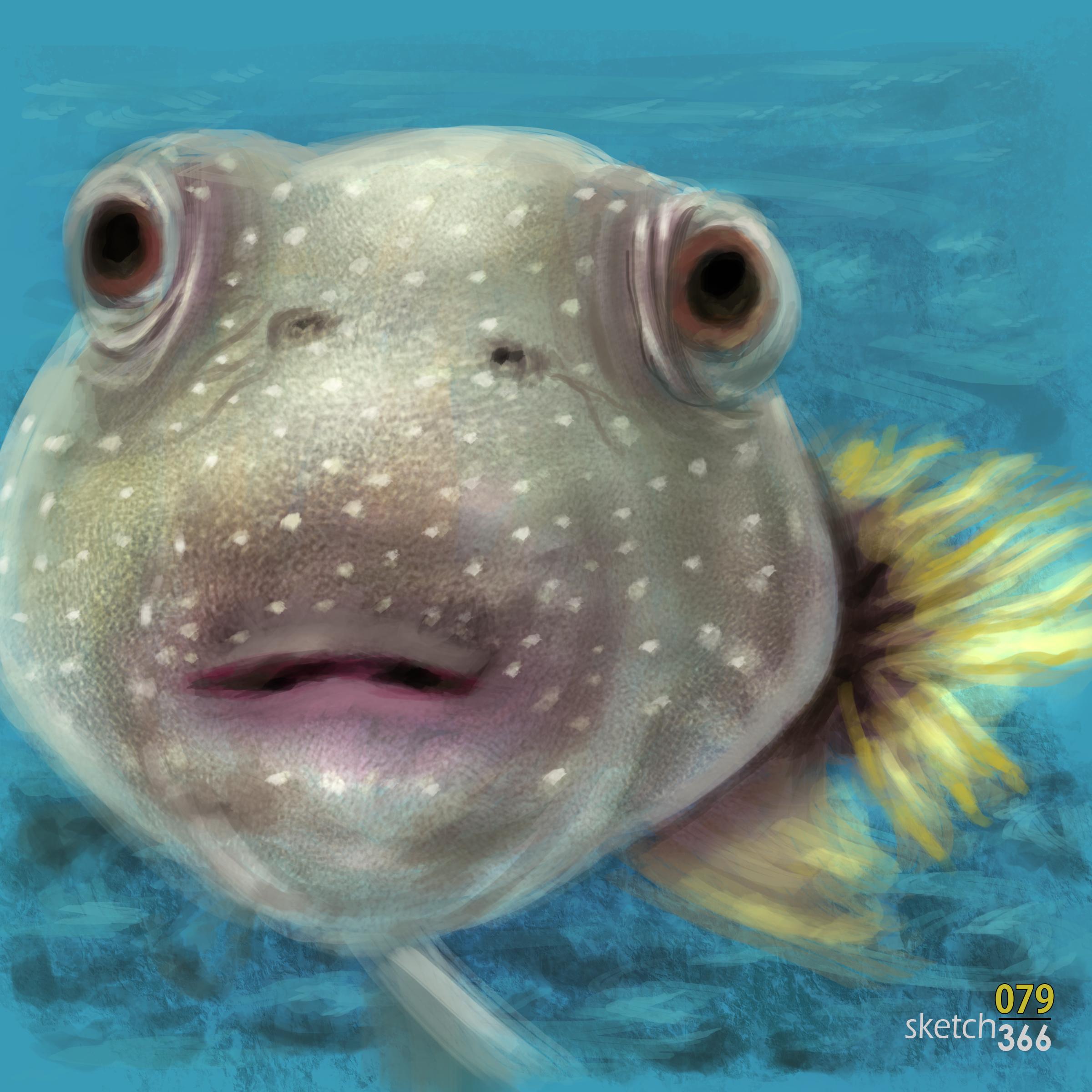puffer fish - digital paint