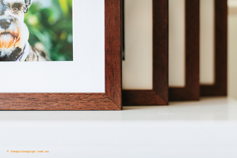 twoguineapigs_mounted_photo_prints_gemma_1500-2.jpg