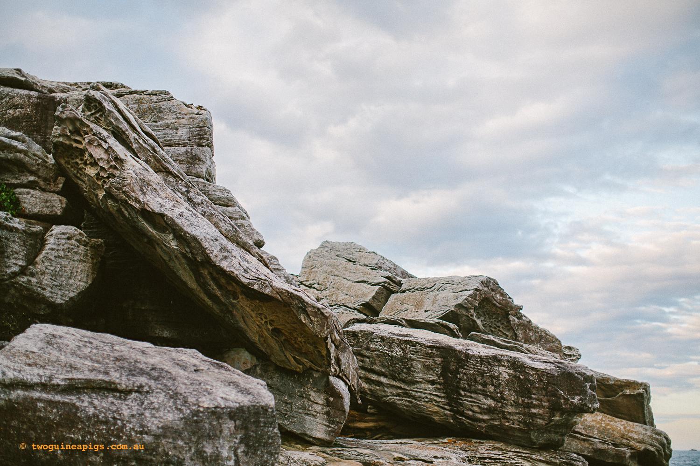 twoguineapigs_pet_photography_coastal_rock_sydney_landscapes