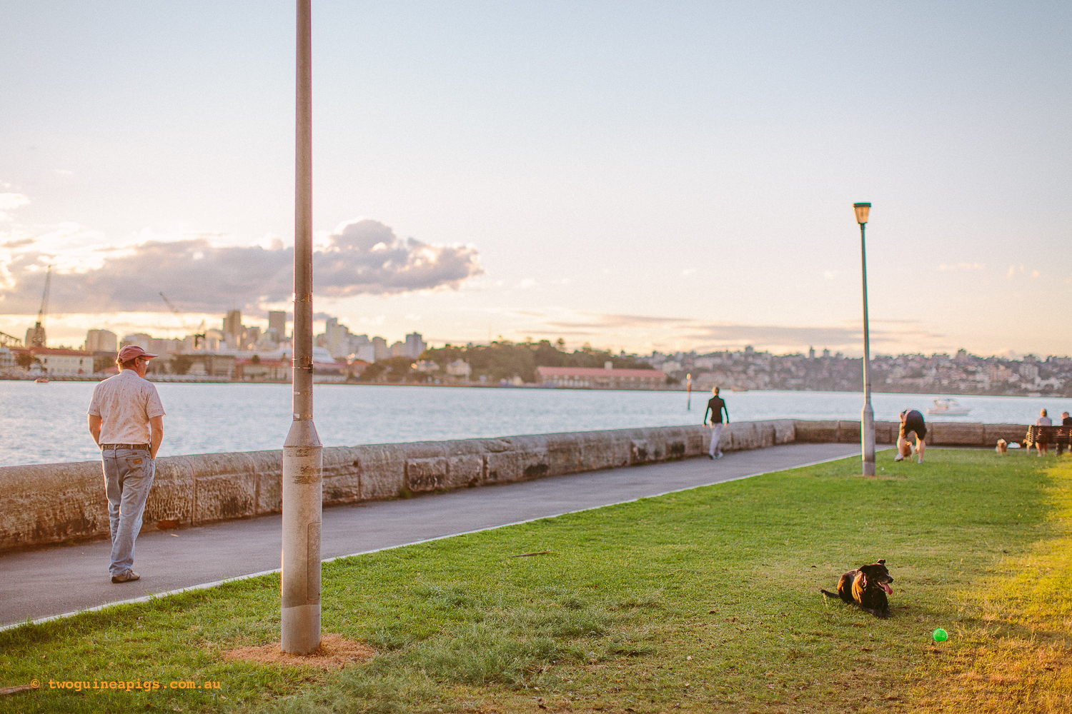 twoguineapigs_rushcutters_bay_winter_sunset_landscapes_1500-8.jpg