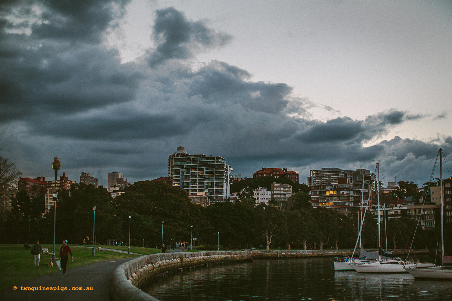 twoguineapigs_rushcutters_bay_winter_sunset_landscapes_1500-21.jpg