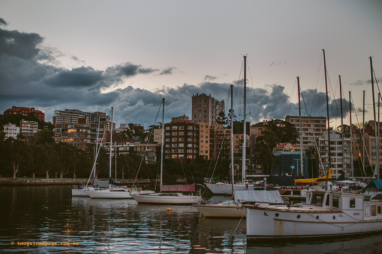 twoguineapigs_rushcutters_bay_winter_sunset_landscapes_1500-22.jpg