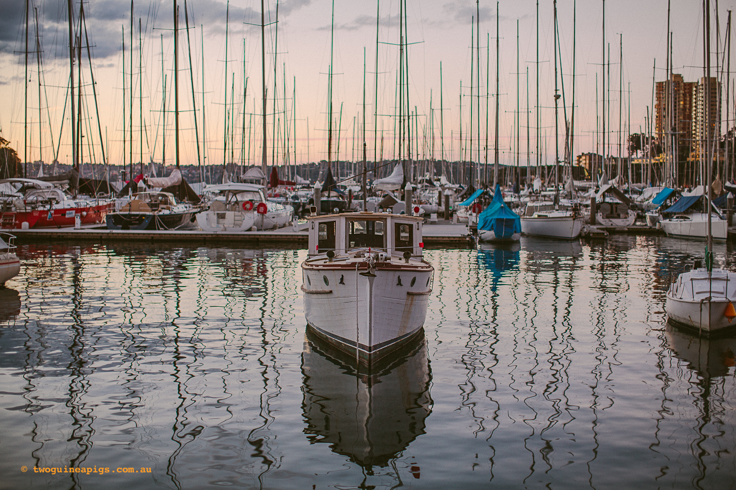 twoguineapigs_rushcutters_bay_winter_sunset_landscapes_1500-24.jpg