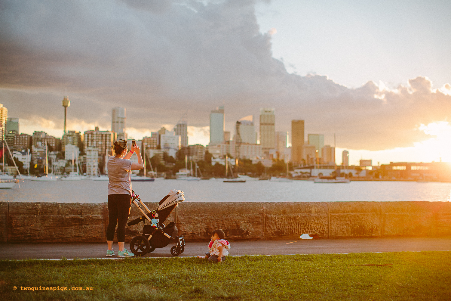 twoguineapigs_pet_photography_rushcutters_bay_potts_point_landscapes