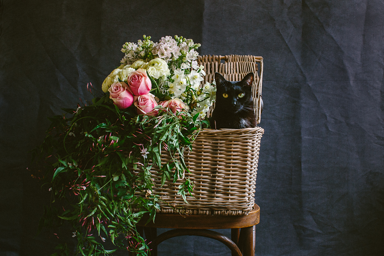 twoguineapigs_photography_ruby_slippers_cat_and_floral_series_1500-16.jpg