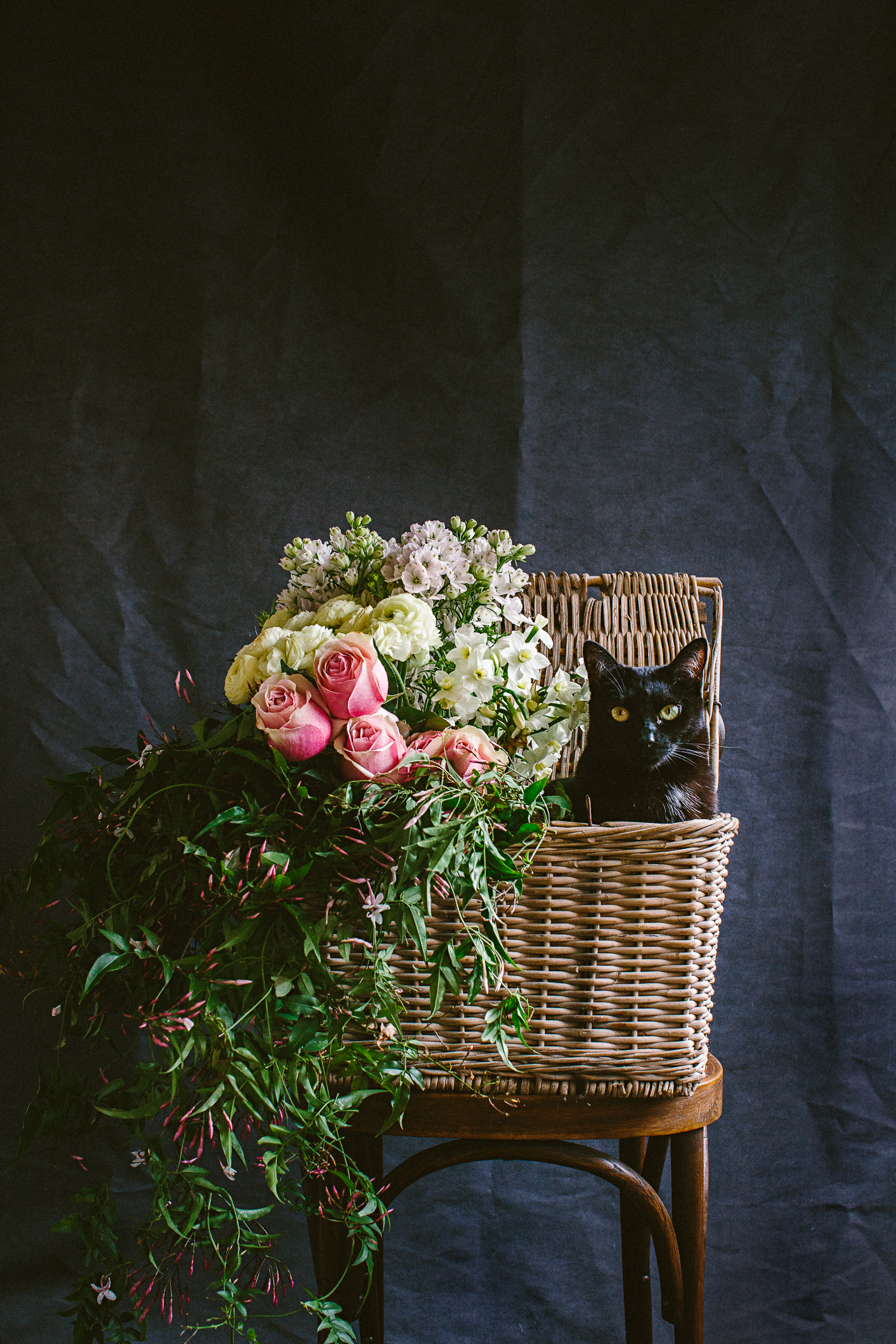 twoguineapigs_photography_ruby_slippers_cat_and_floral_series_1500-15.jpg