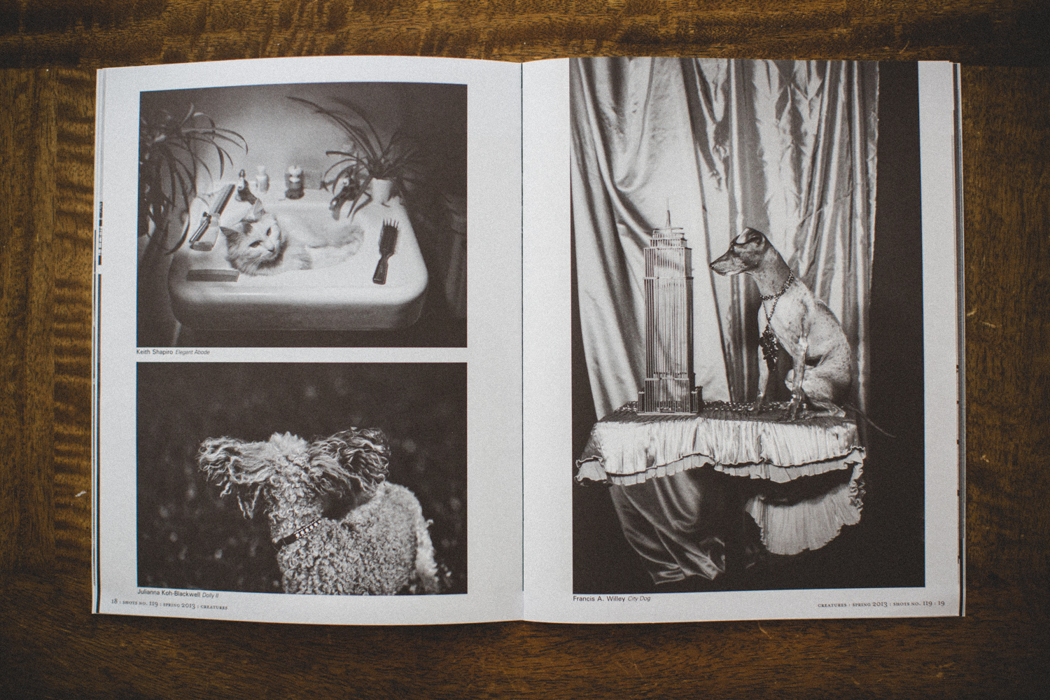Dolly II (bottom left page)  , published, g 18, SHOTS, Spring 2013, No. 119.
