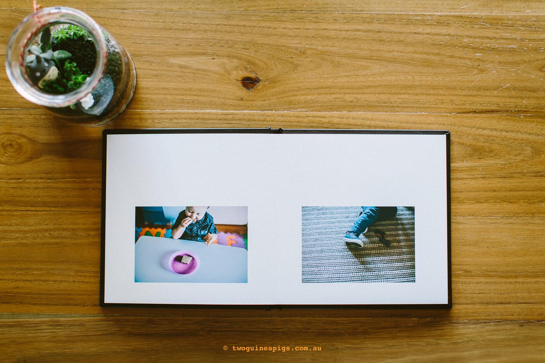 twoguineapigs_pet_photography_levi_and_co_fine_art_album_pugs