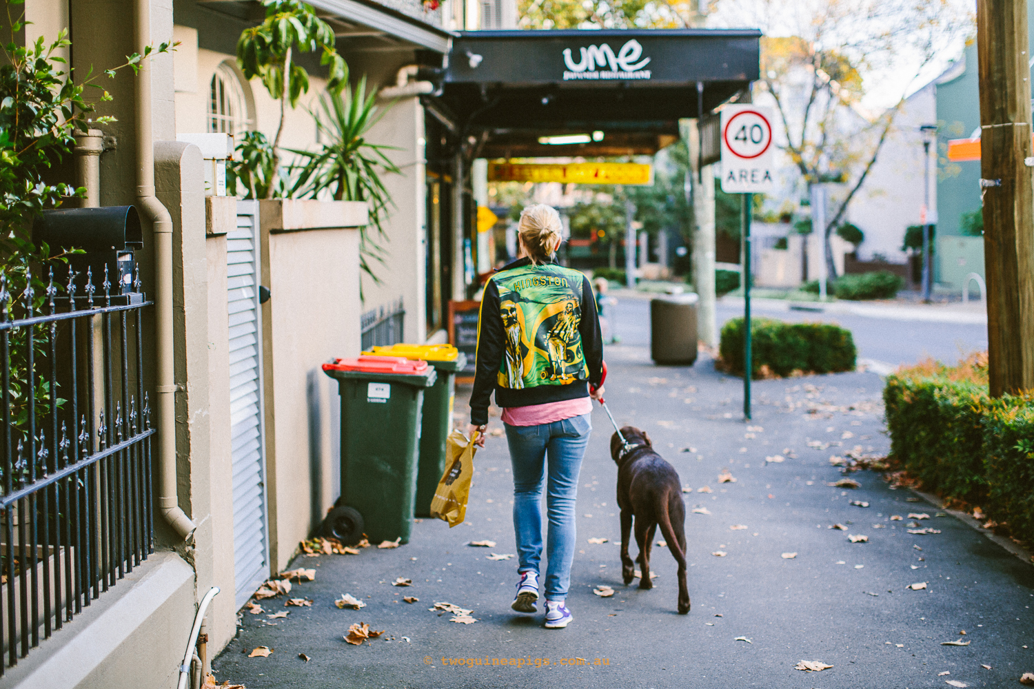 twoguineapigs_photography_jkblackwell_street_dogs_surry_hills_evening_strolls_1500-1.jpg