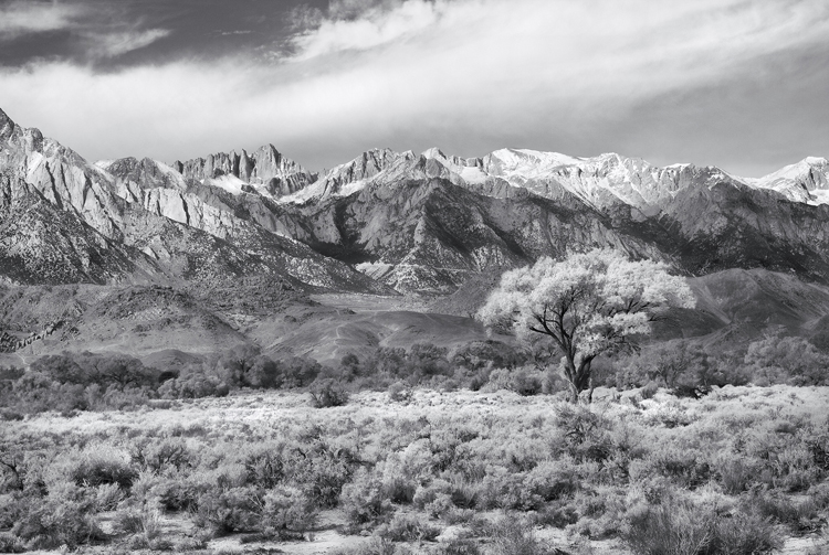 mt. whitney and the eastern sierra