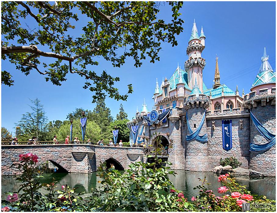 Castle - June 22, 2015