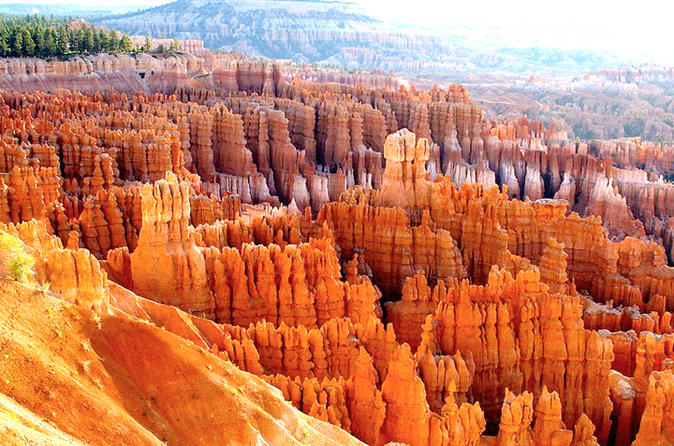 bryce-canyon-and-zion-national-parks-small-group-tour-from-las-vegas-in-las-vegas-112202.jpg