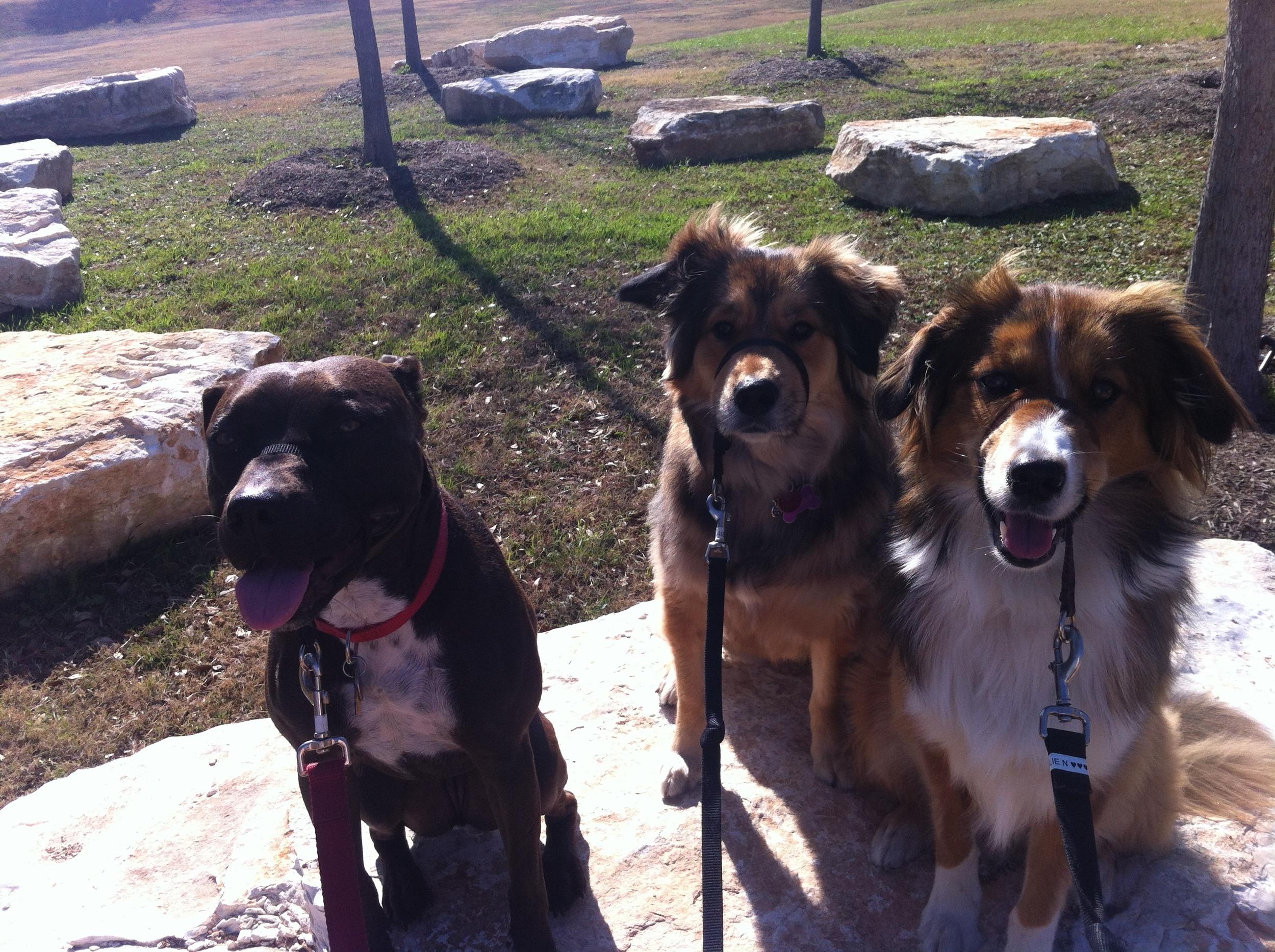 LEENA, ARIES & ELLIE