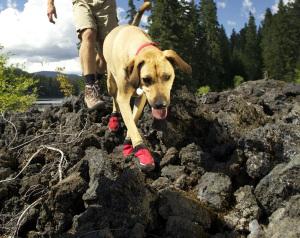 grip-trex-dog-boot-lava-rock.jpg