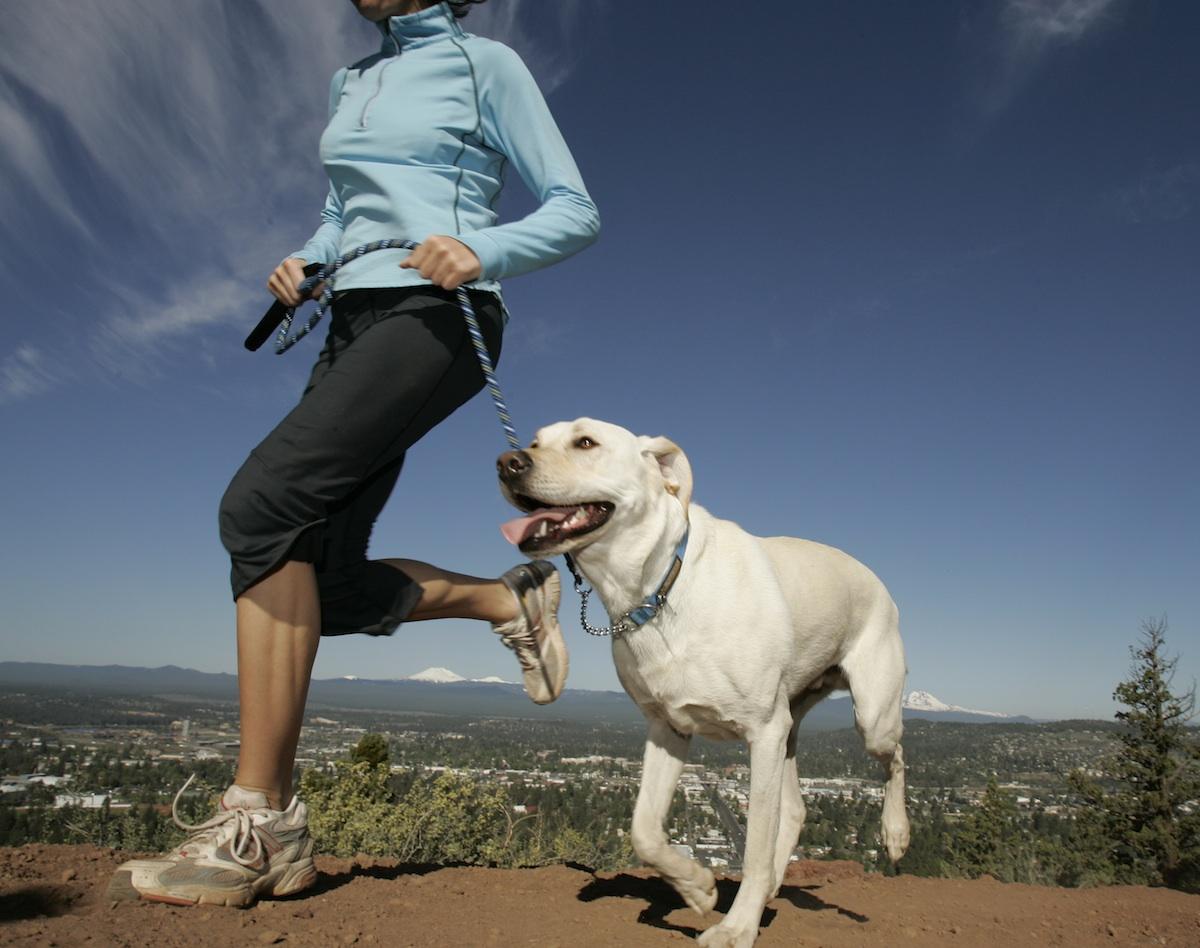 trail-running-w-dog.jpg