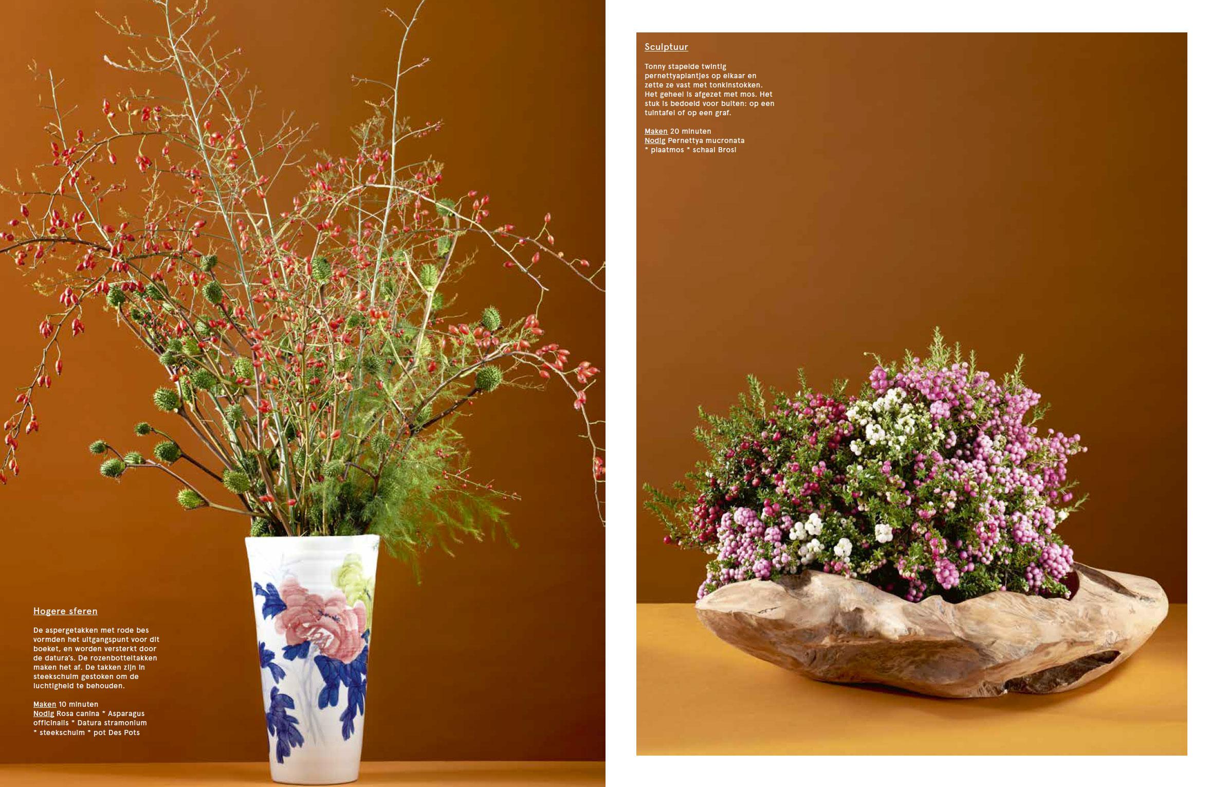 bloem_blad_3.jpg
