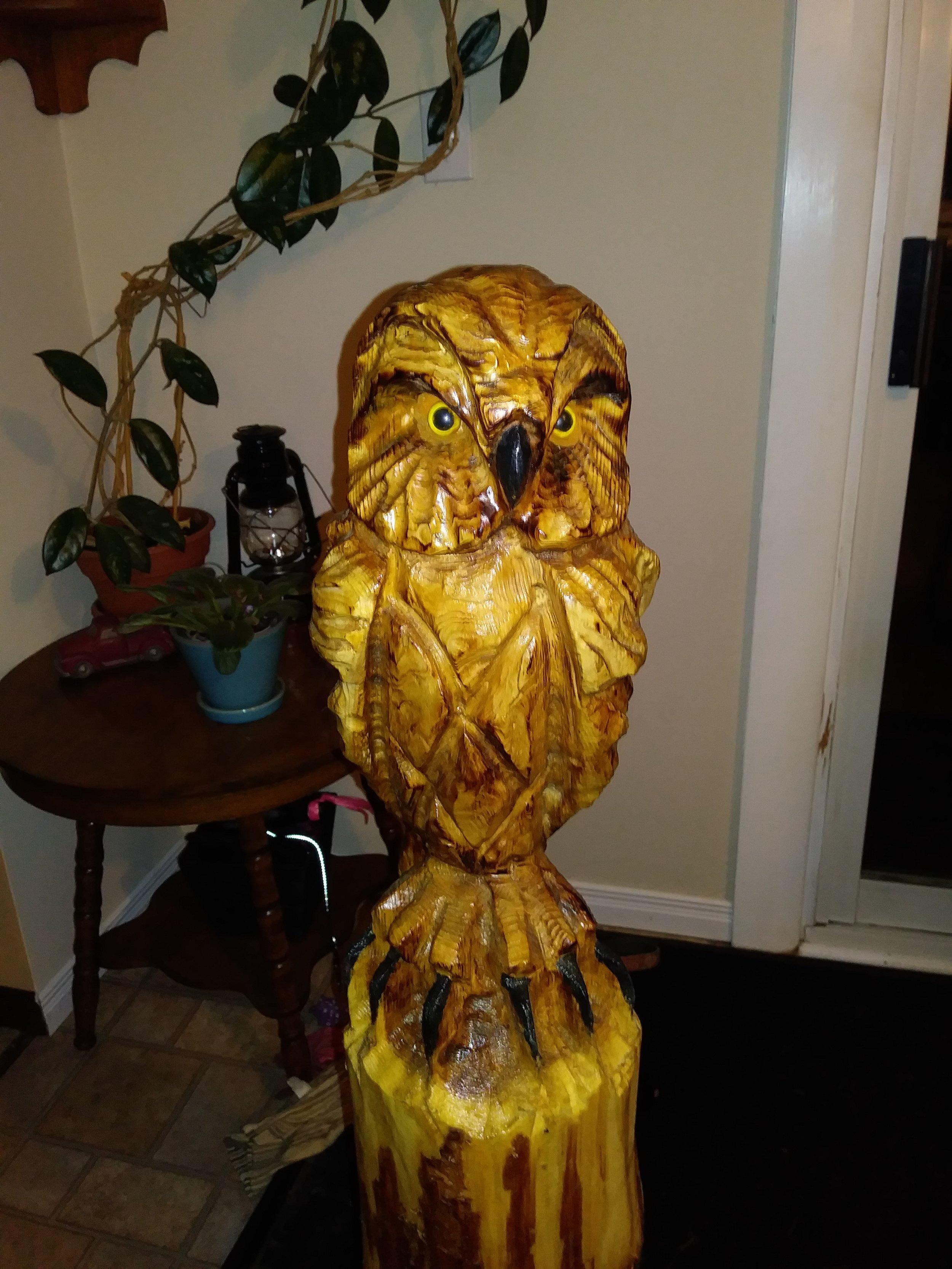KAP Owl.jpg