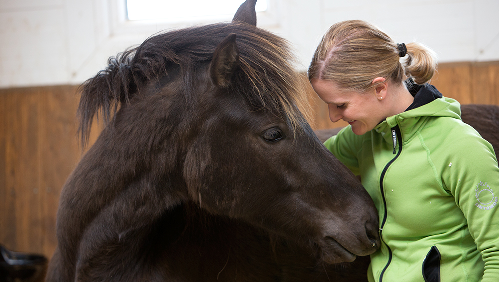In order to train and work with horses in a good way,a love of horses is the essential and most important quality for trainer and riders