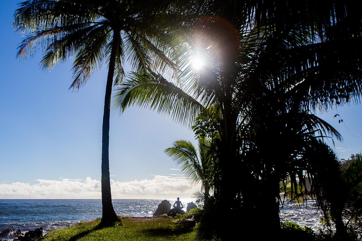 0657_Hawaii_12-28-16-0219.jpg