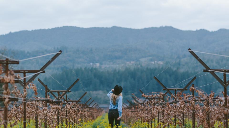 Vineyard Hopping, St Helena, CA | Someplace Wild | www.someplacewild.com