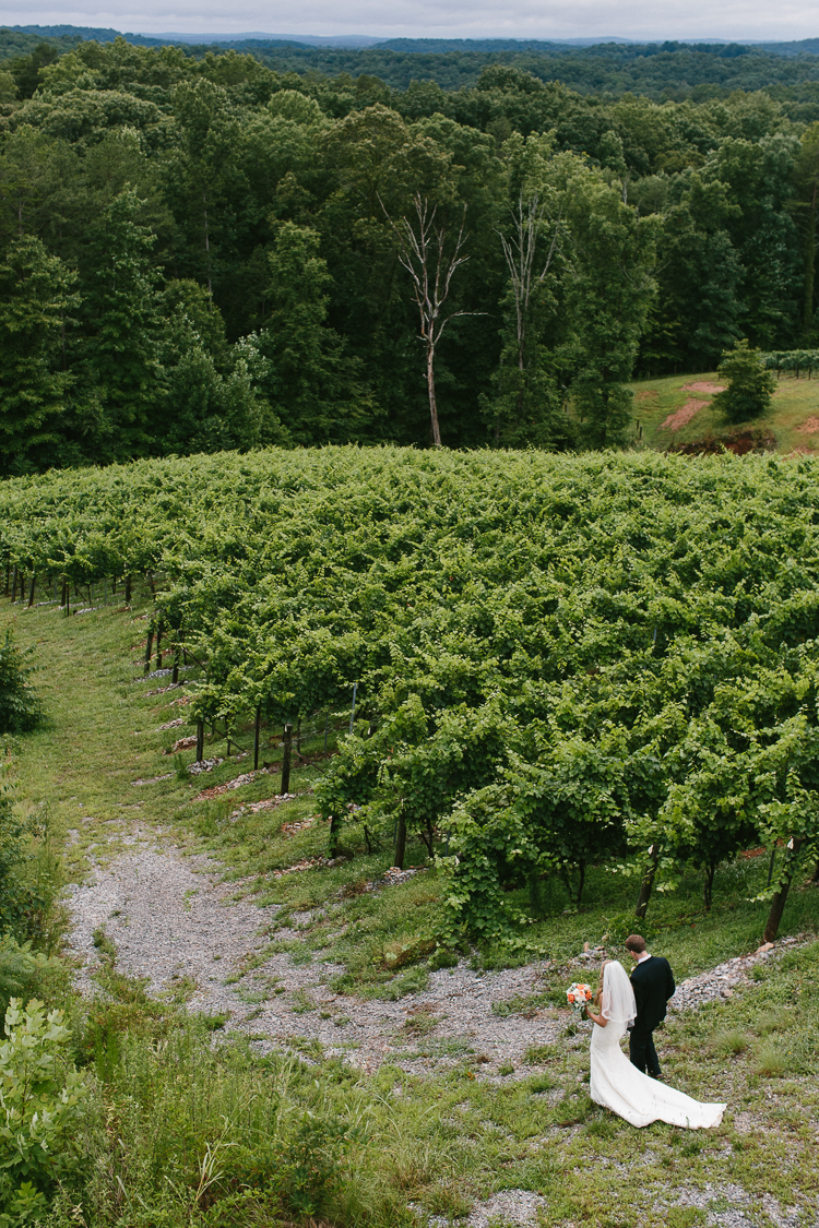 The Bride and Groom Walking Through the Beautiful Vineyards of Wolf Mountain