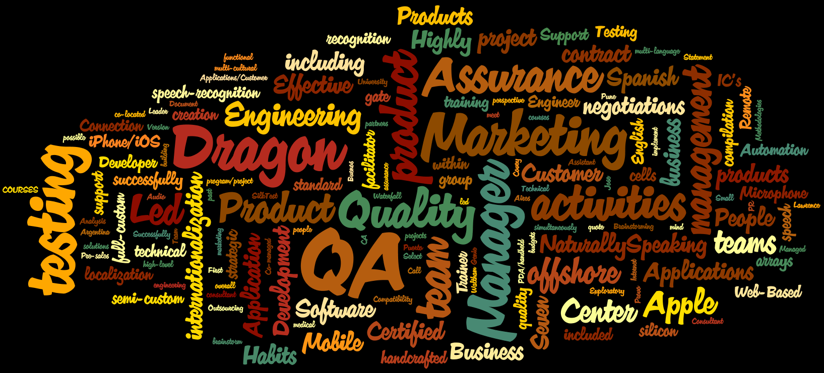 Wordle.net result from my professional resume...